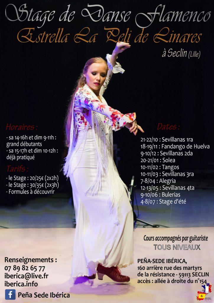 flamenco lille nord pas de calais cours danse