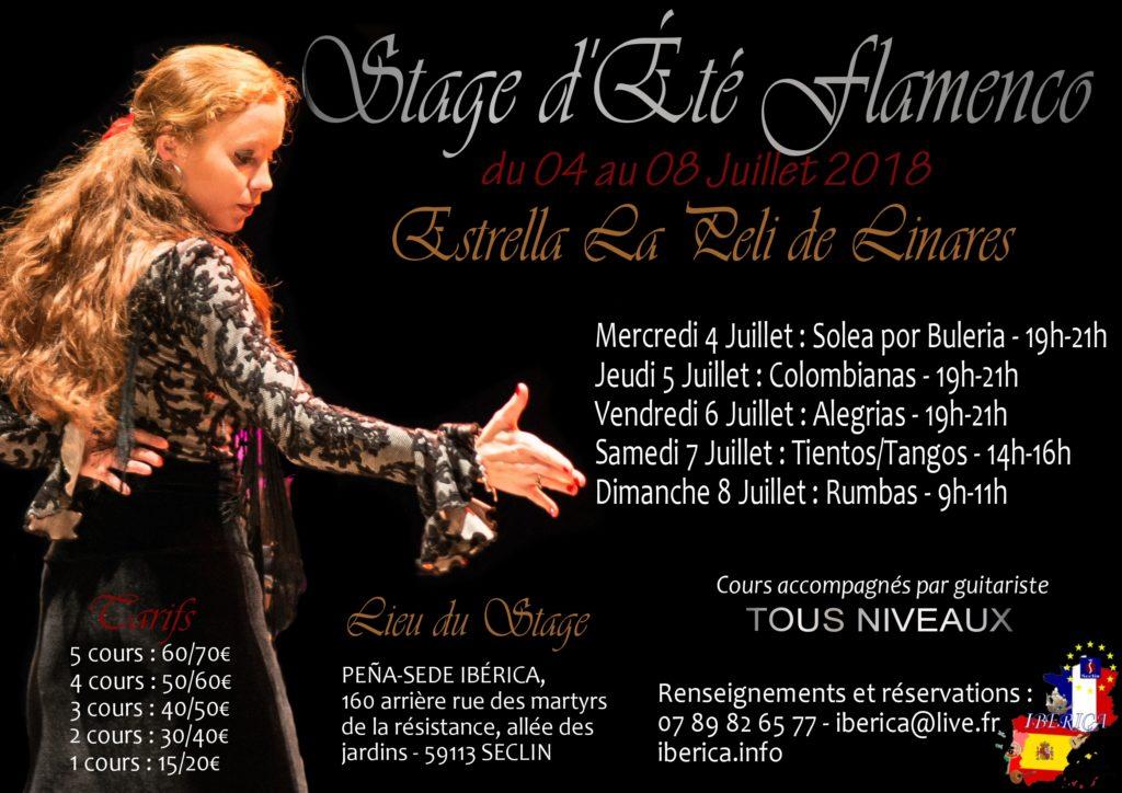 stage danse flamenco été lille nord pas de calais picardie masterclass hauts de france