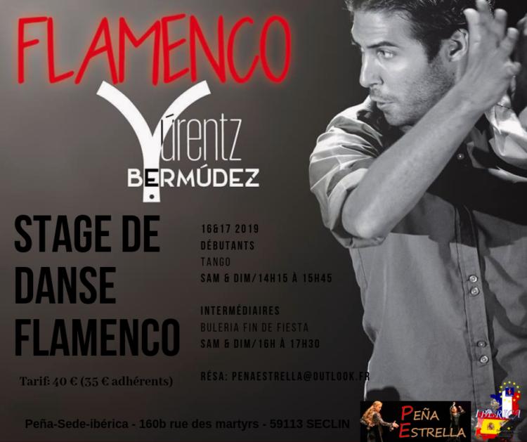 19 03 16 17 STAGE FLAMENCO LILLE Yúrentz Bermúndez Peña Estrella Ibérica