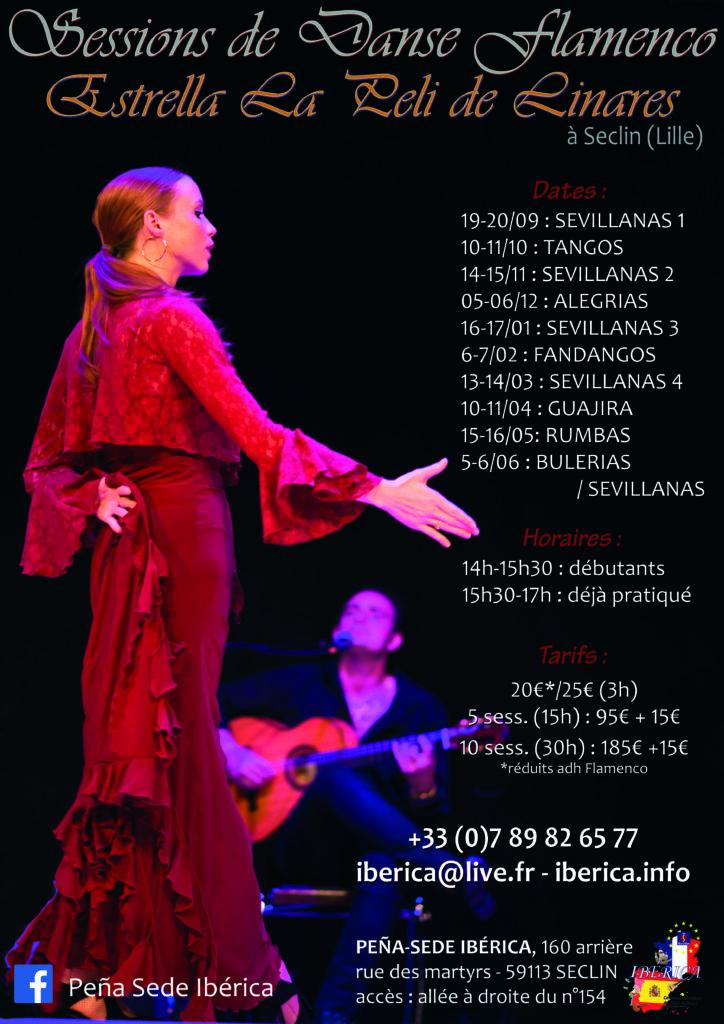 Flamenco danse cours Lille Nord pas Calais Picardie Hauts de France